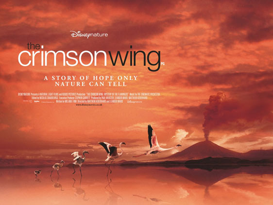 The Crimson Wing: Mystery of the Flamingos Poster #2