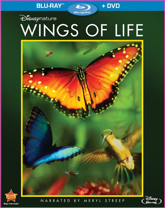 Wings of Life Poster