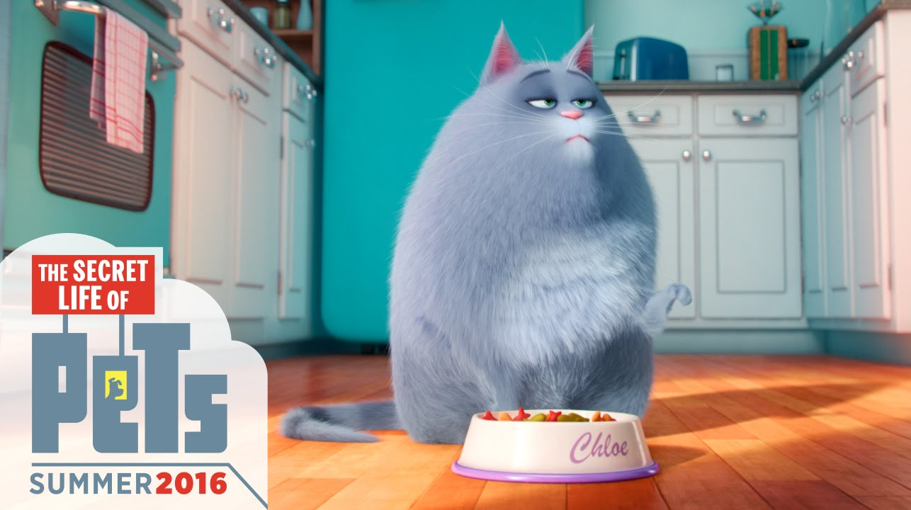 The Secrete Life of Pets Trailer Image