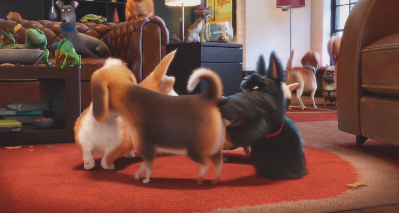 The Secret Life of Pets Butt Sniffs