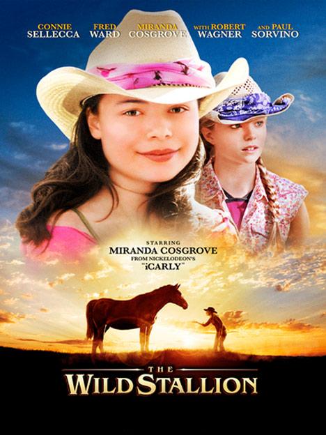 The Wild Stallion Poster