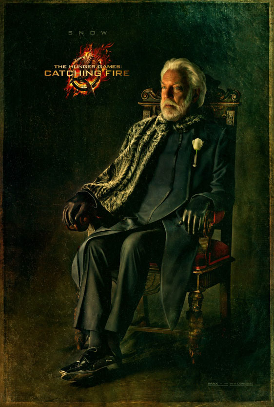 The Hunger Games: Catching Fire Poster #14