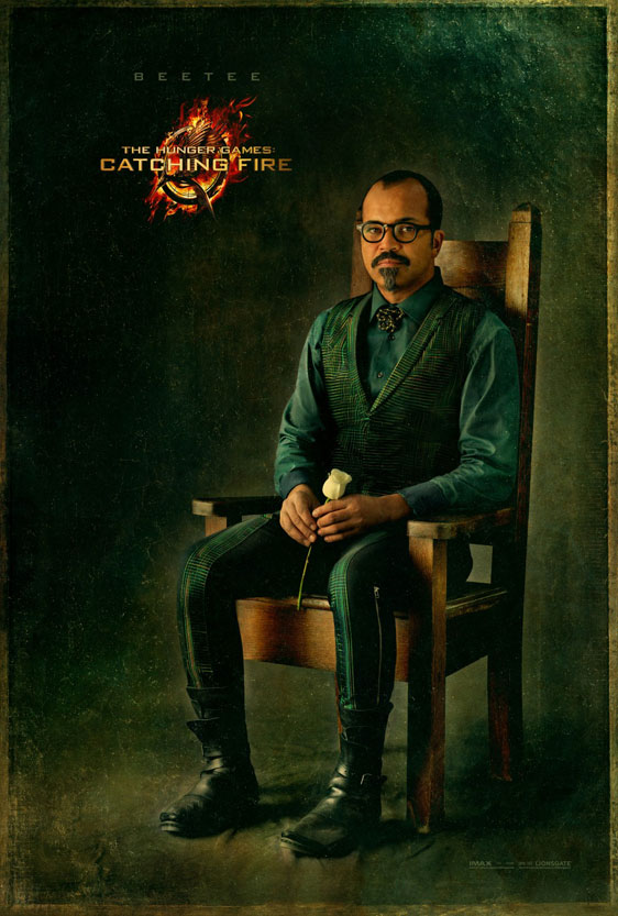 The Hunger Games: Catching Fire Poster #9