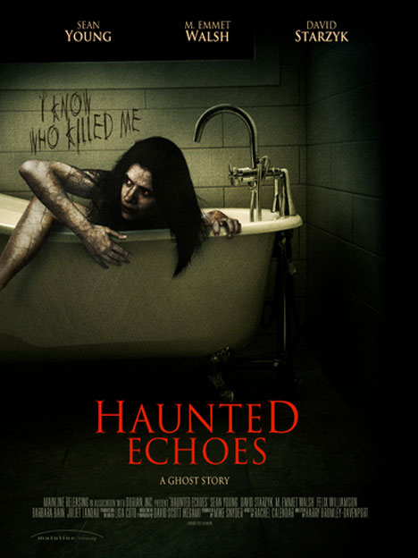 Haunted Echoes Poster #1