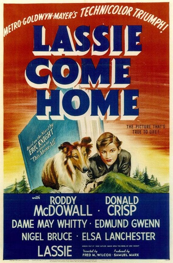 Lassie Come Home Poster #1
