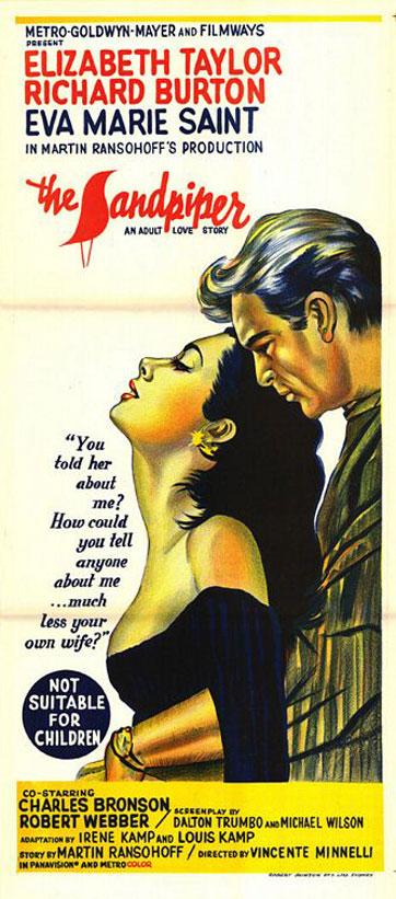 The Sandpiper Poster #2