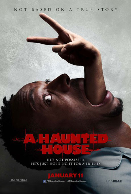 A Haunted House Poster #5