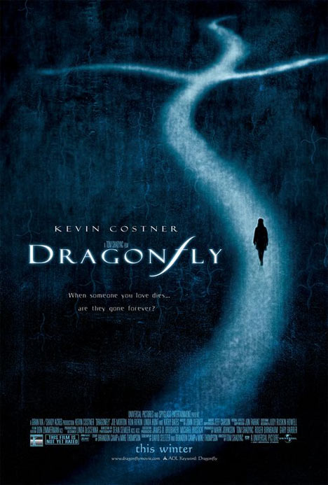Dragonfly Poster #1