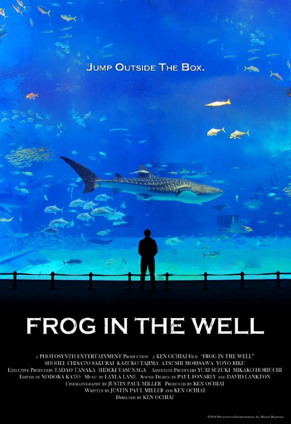 Frog in the Well Poster