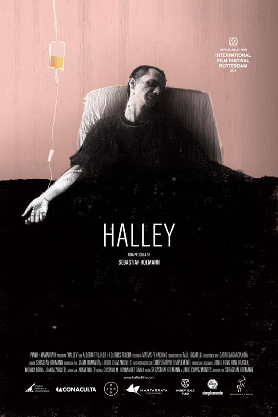 Halley Poster