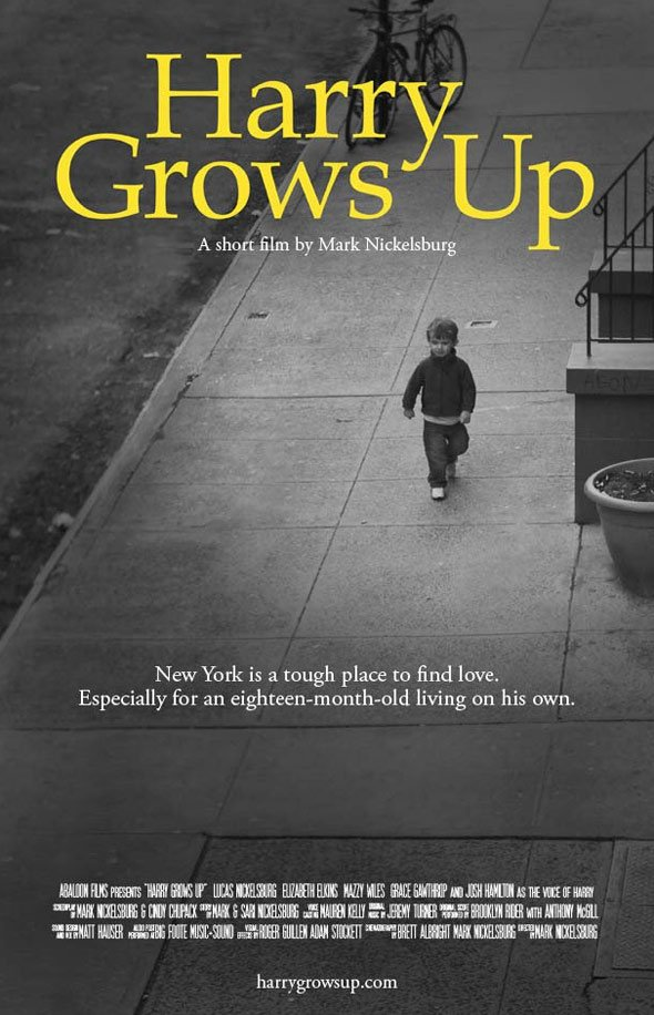 Harry Grows Up Poster