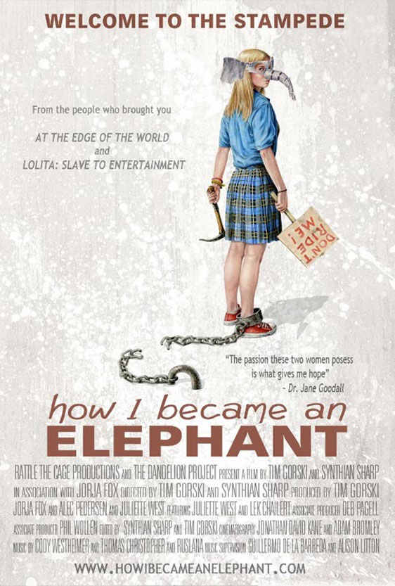 How I Became an Elephant Poster #1
