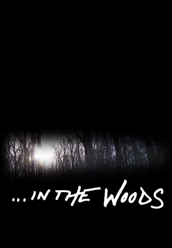 In the Woods Poster