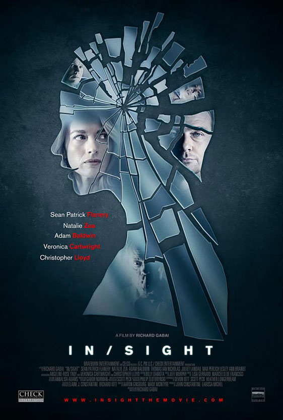 InSight Poster #1
