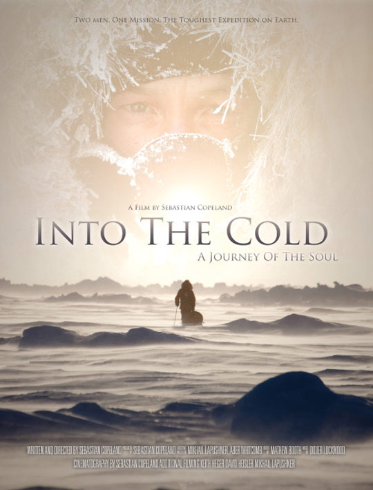 Into the Cold Poster