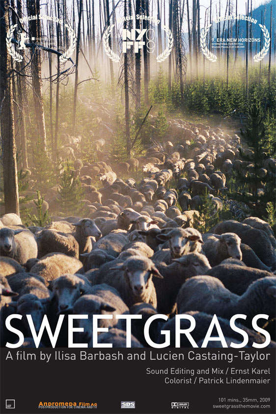 Sweetgrass Poster #1