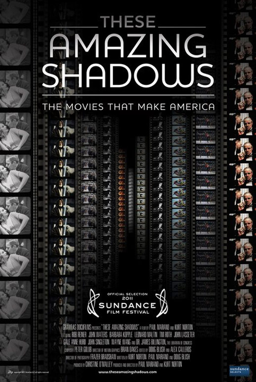 These Amazing Shadows Poster #1
