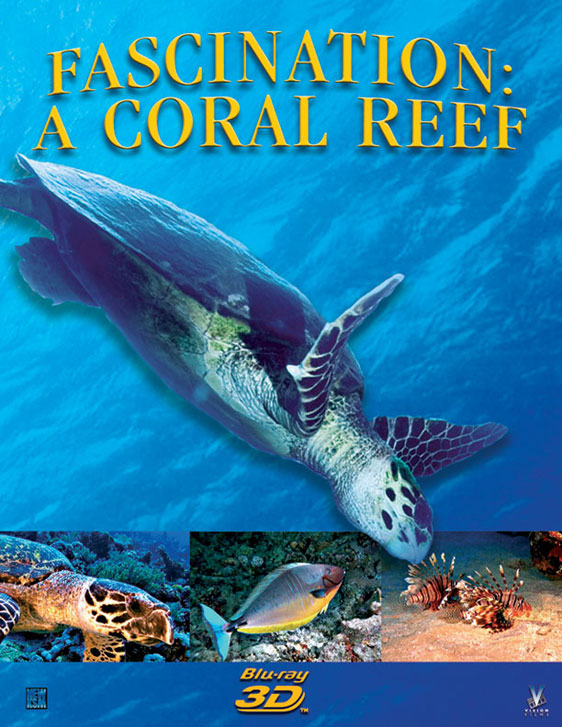 Fascination: Coral Reef 3D Poster