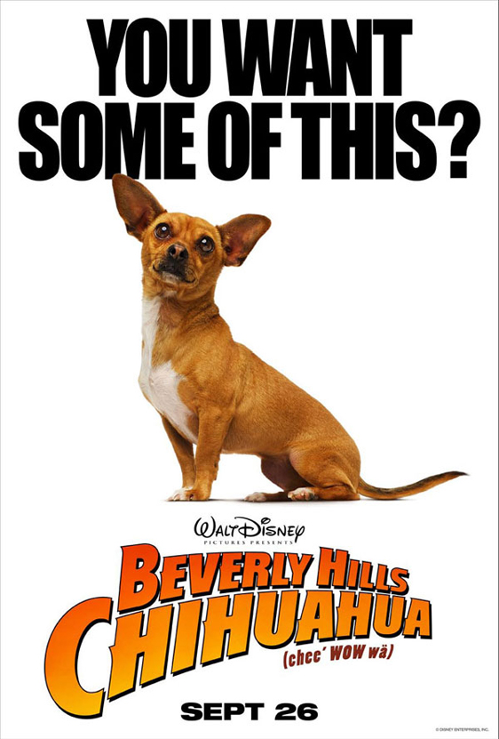 Beverly Hills Chihuahua Poster #3