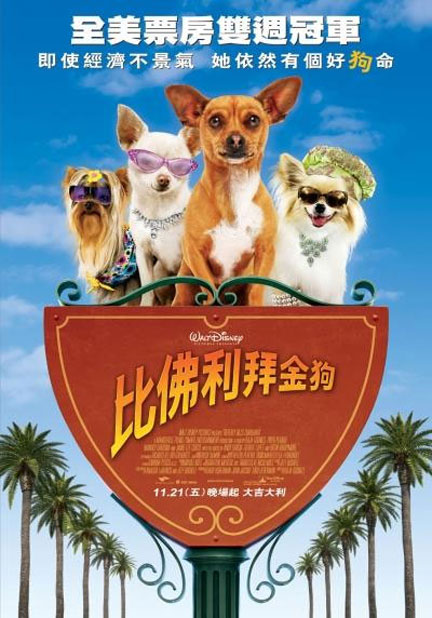 Beverly Hills Chihuahua Poster #5