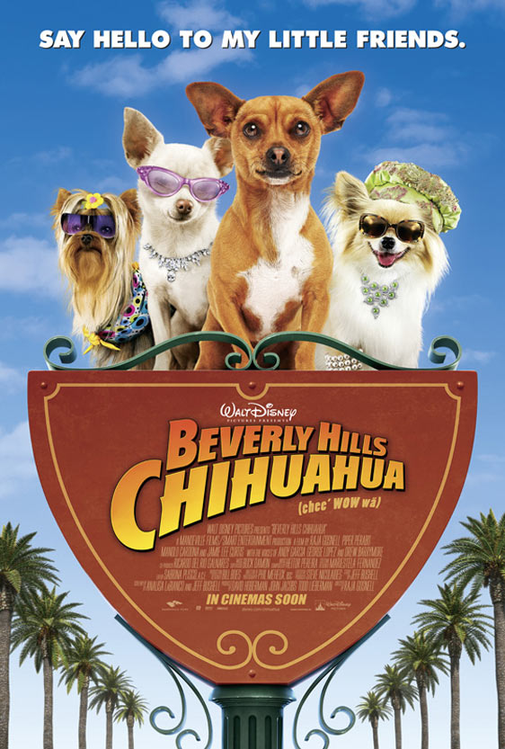 Beverly Hills Chihuahua Poster #6