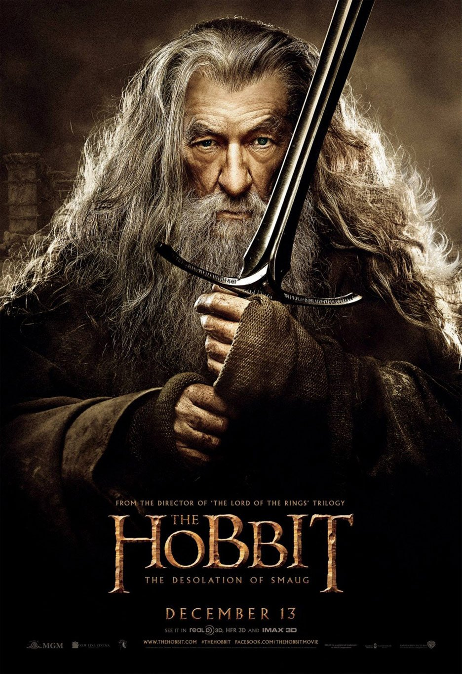 The Hobbit: The Desolation of Smaug Poster #10