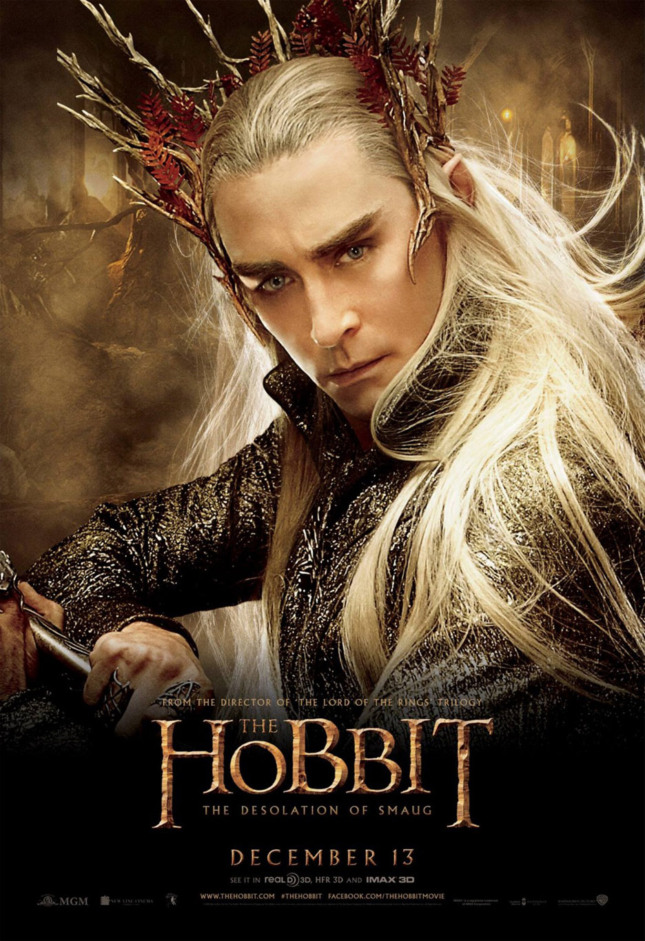 The Hobbit: The Desolation of Smaug Poster #14