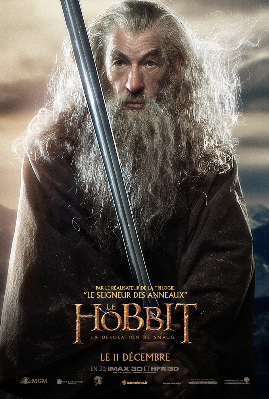 The Hobbit: The Desolation of Smaug Poster #17