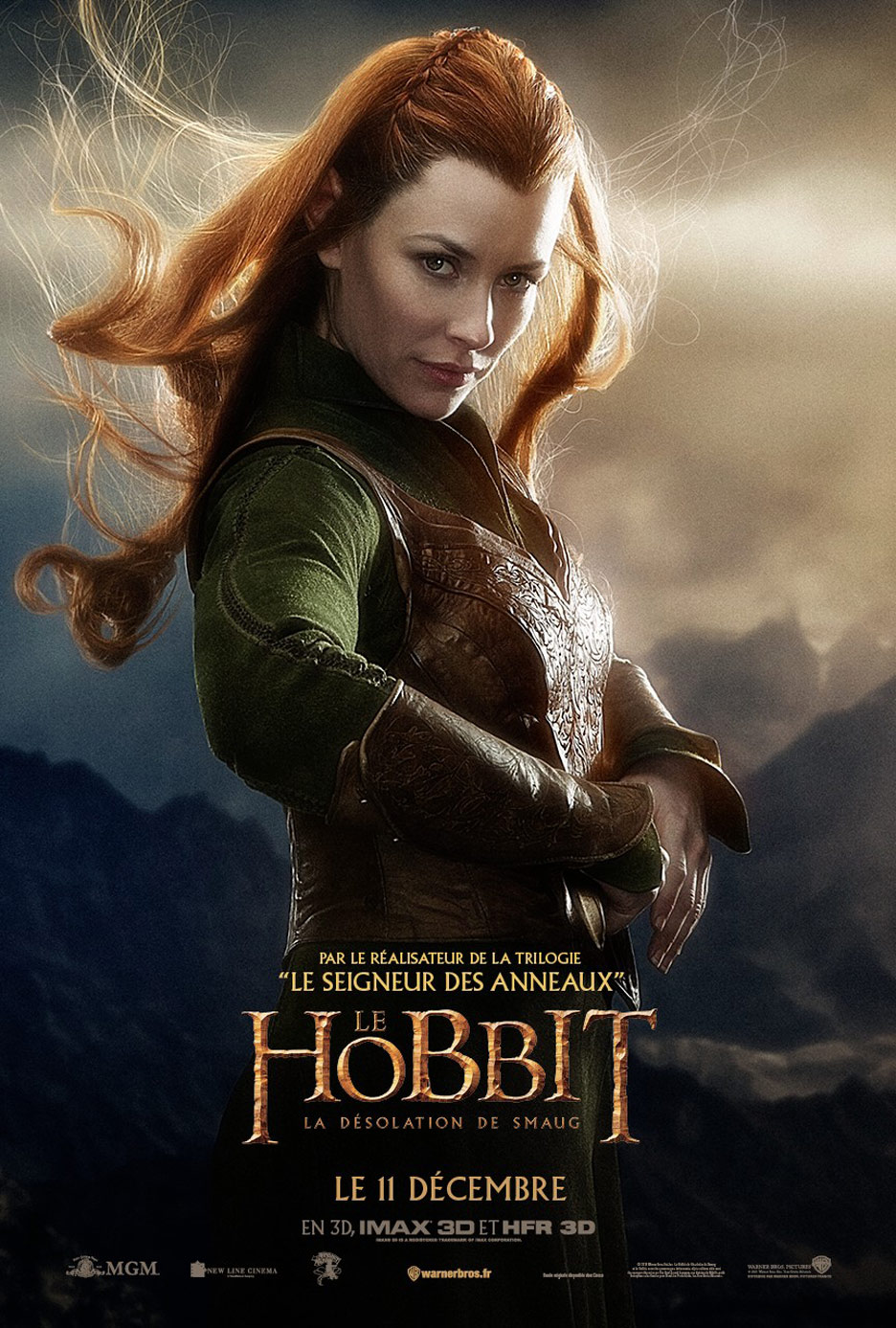 The Hobbit: The Desolation of Smaug Poster #19