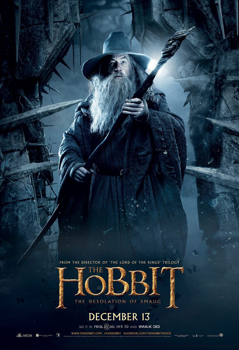 The Hobbit: The Desolation of Smaug Poster #28