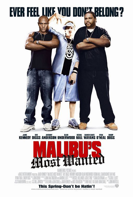 Malibu's Most Wanted Poster