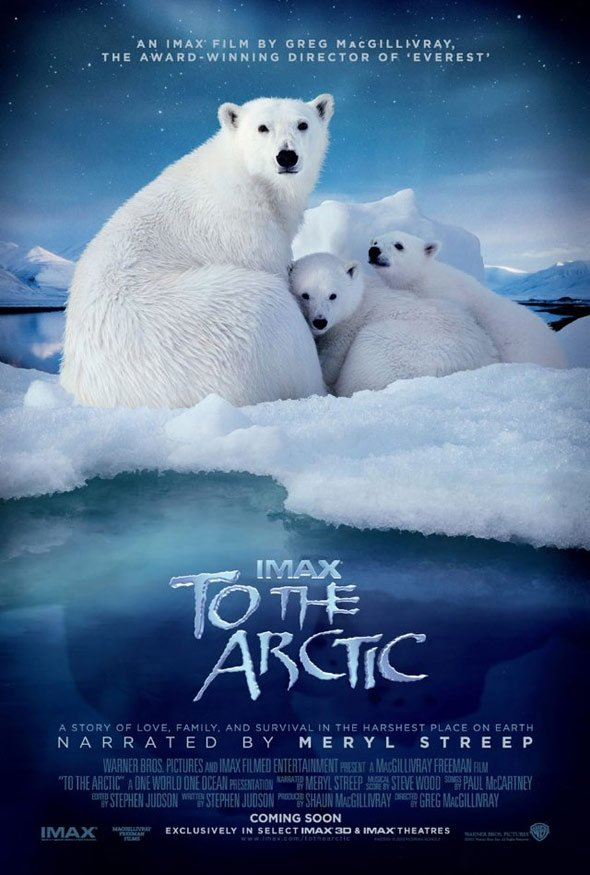 To the Arctic 3D Poster #1