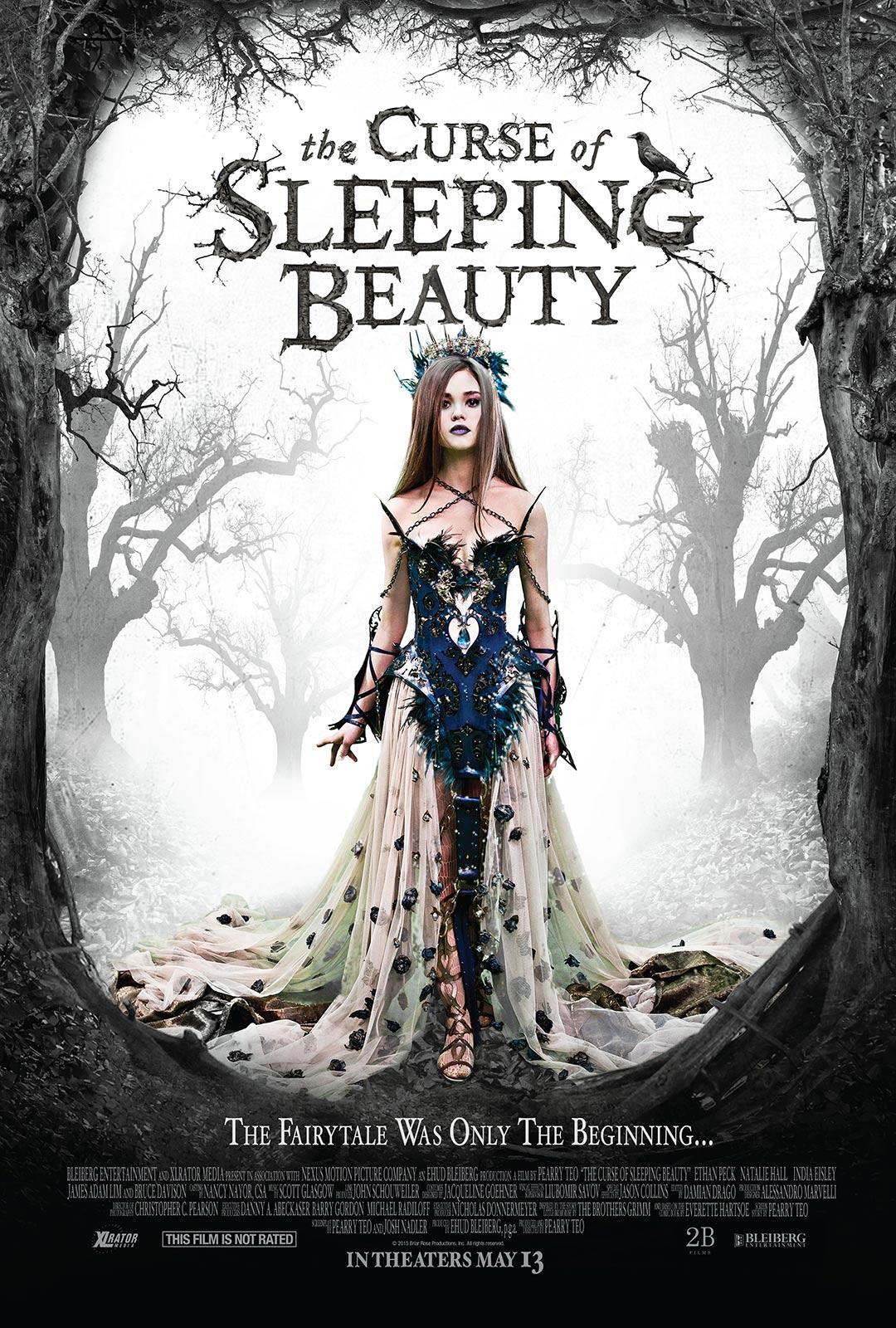 Sleeping Beauty 2011 film  Wikipedia