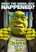 Shrek Forever After (2010) Poster #3 Thumbnail