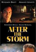 After the Storm (2001) Poster #1 Thumbnail