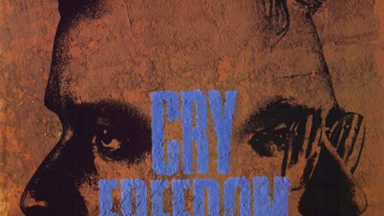 cry freedom movie essays