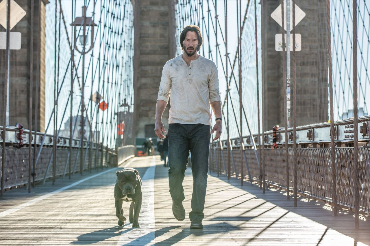 John Wick: Chapter Two Pit Bull