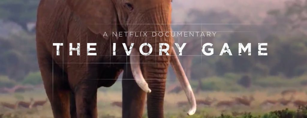 The Ivory Game Netflix