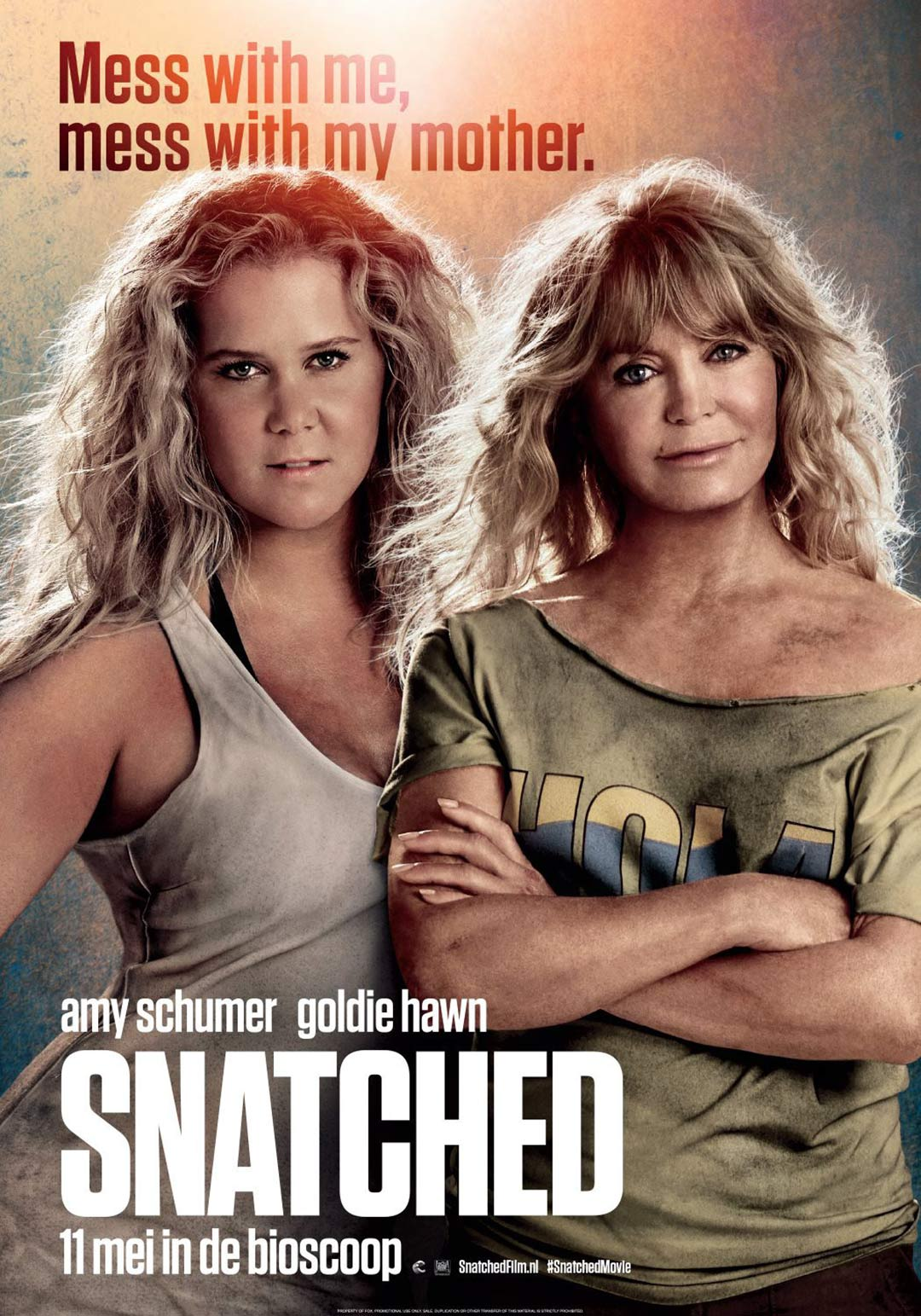 Snatched Poster #3