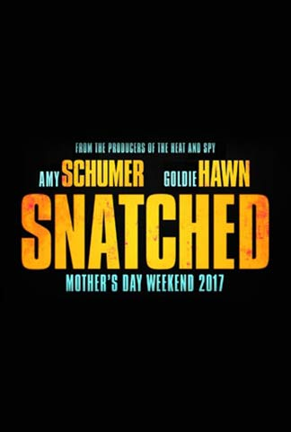Snatched Poster #1