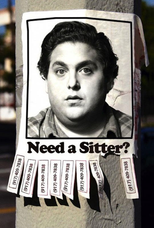 The Sitter Poster #1