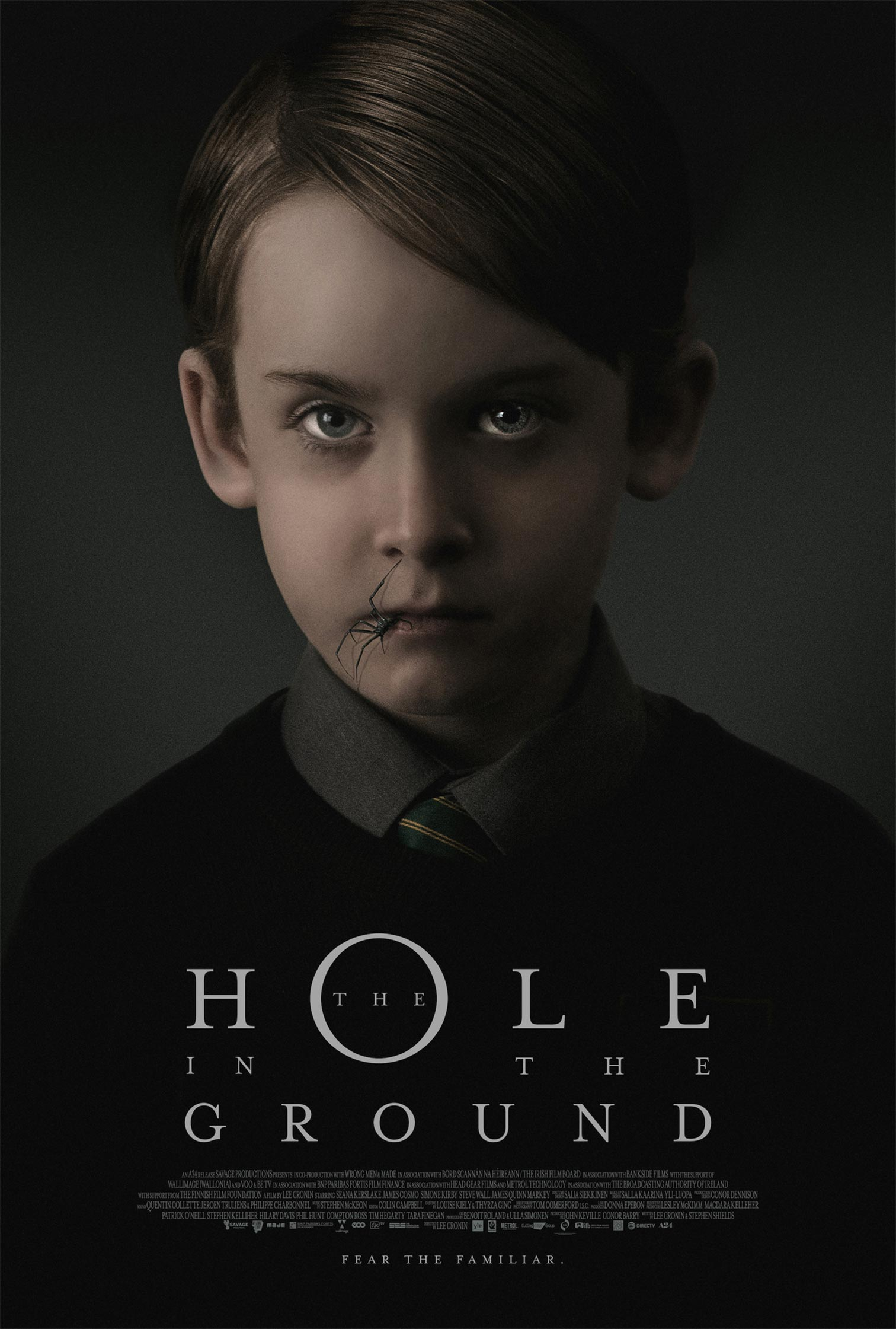The Hole in the Ground Poster #1