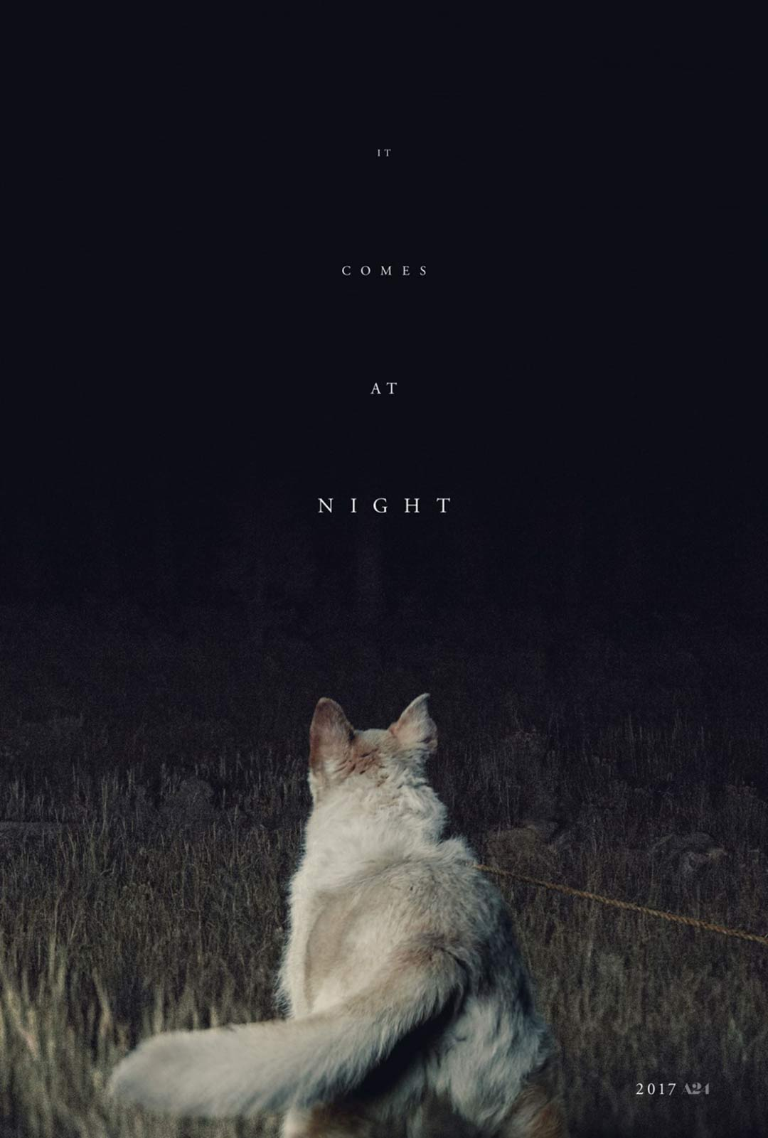 It Comes at Night Poster #1