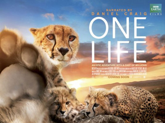 One Life Poster #2