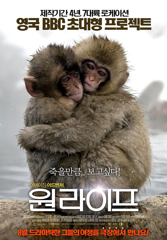 One Life Poster #5