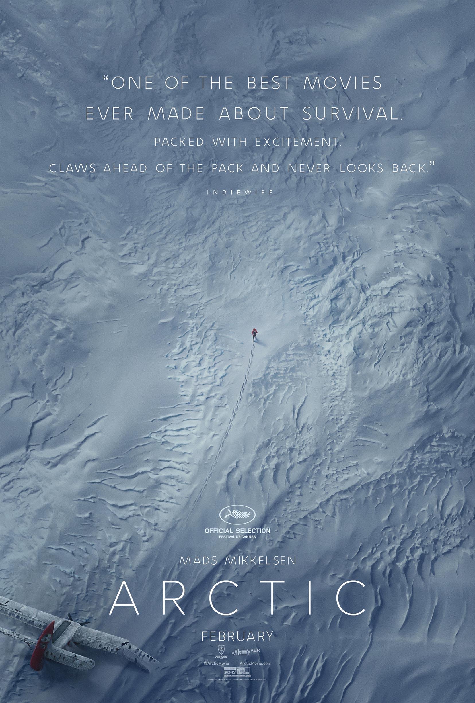 Arctic Poster #1