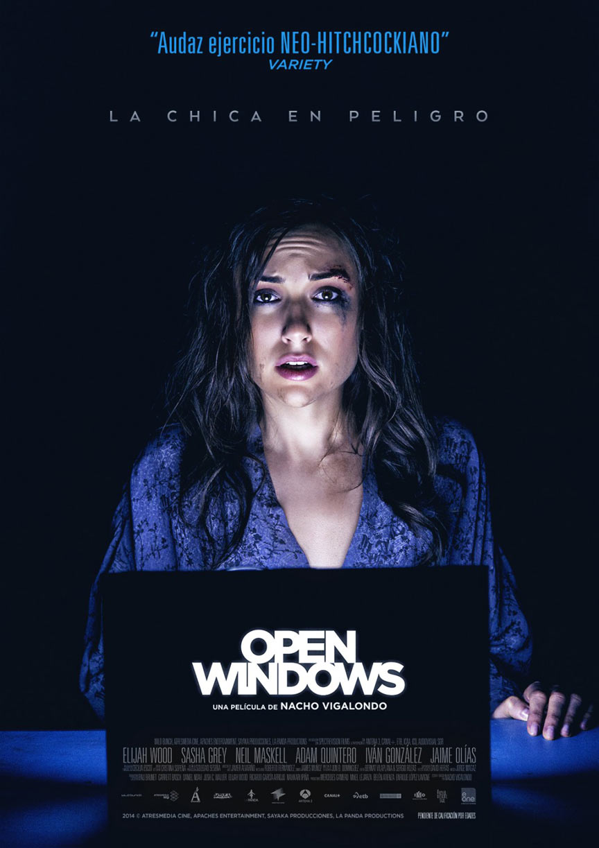 Open Windows Poster #6