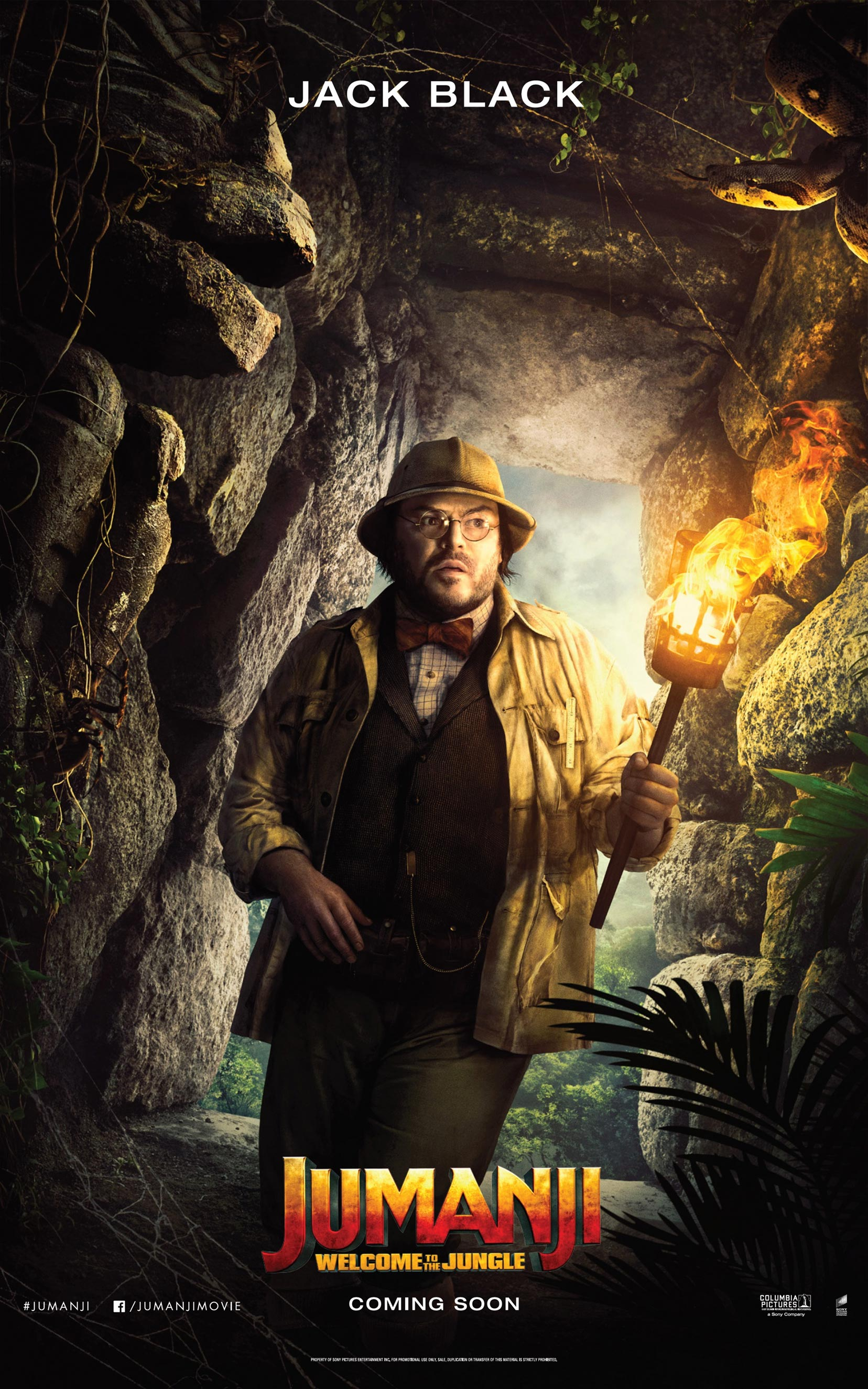 Jumanji: Welcome to the Jungle Poster #6