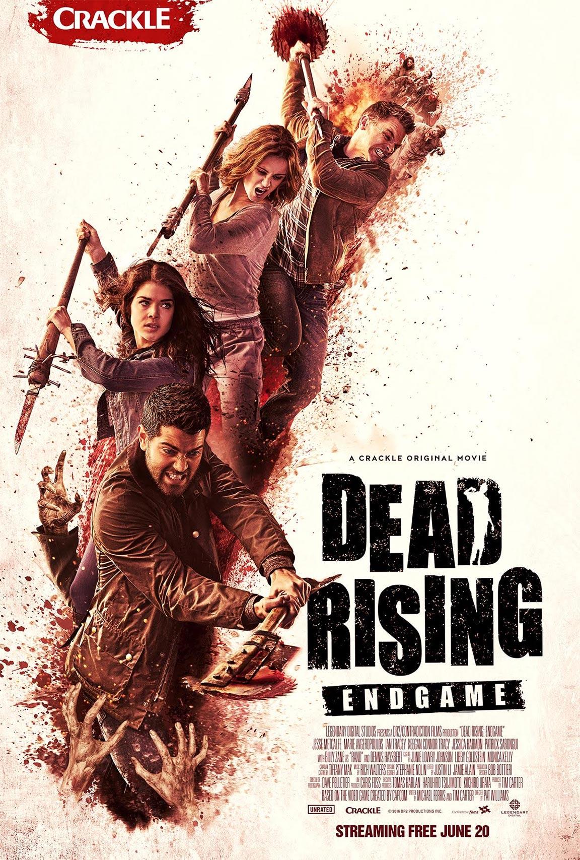 Dead Rising: Endgame Poster #1