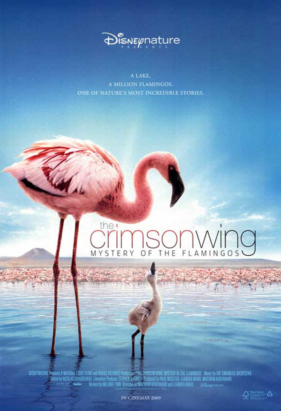 The Crimson Wing: Mystery of the Flamingos Poster #1